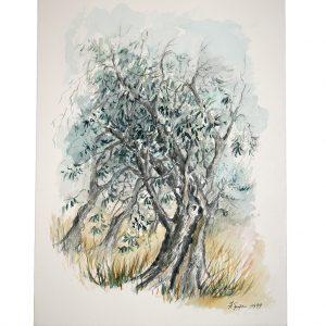 Ein Feigenbaum, Aquarell von Hildegard Pfeifle