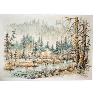 Schönes Landschaftsbild am Huzenbacher See im Schwarzwald gemalt als colorierte Federzeichnung von Hildegard Pfeifle